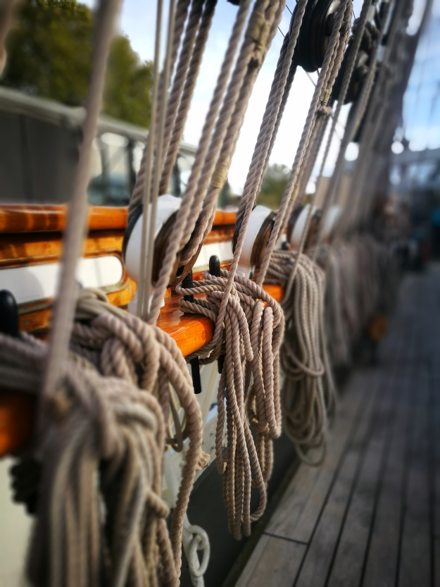 artistic photo of a row of ship's ropes on pulleys