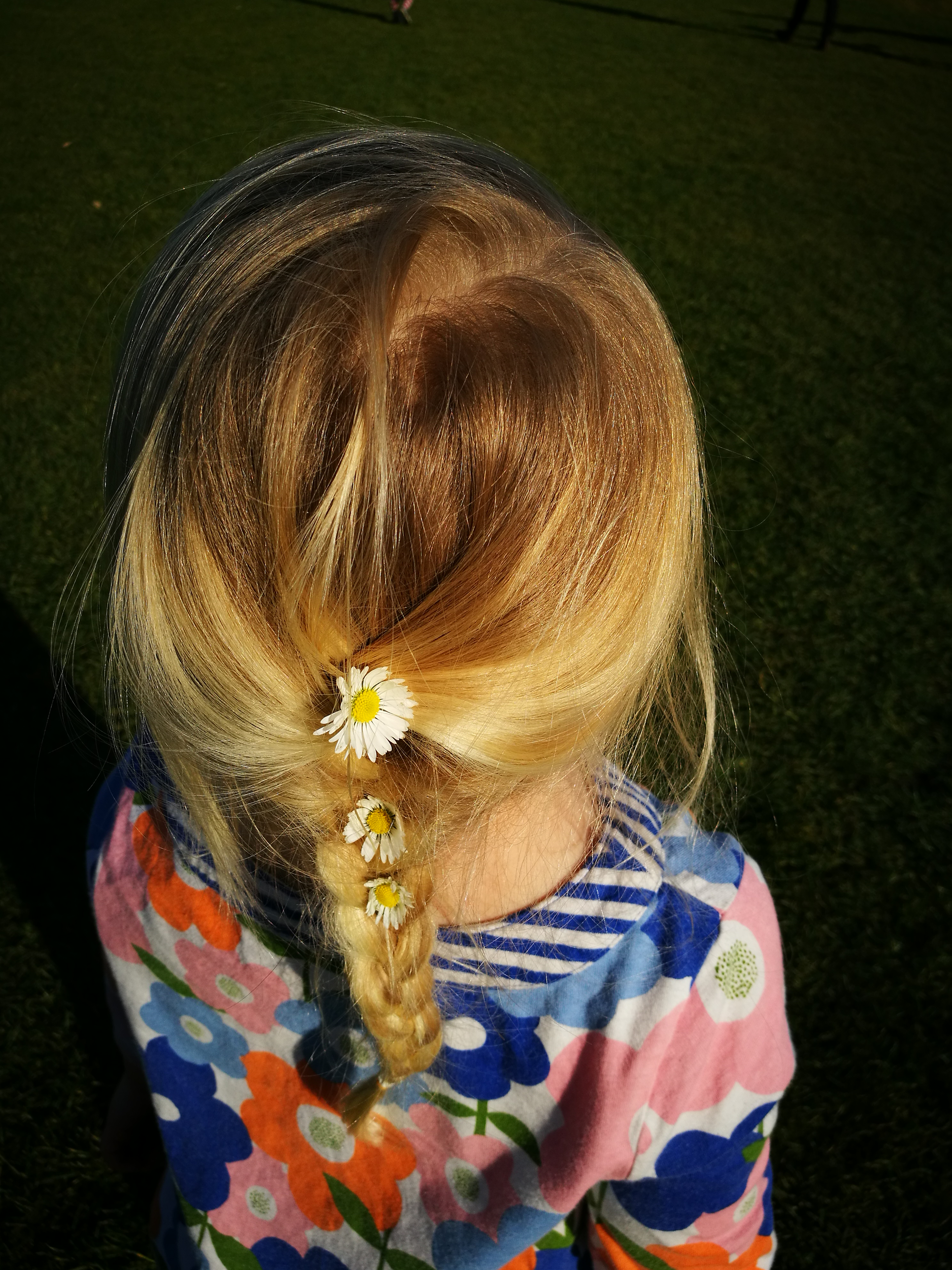My daughter's hair in a french braid with small daisies woven in throughout.
